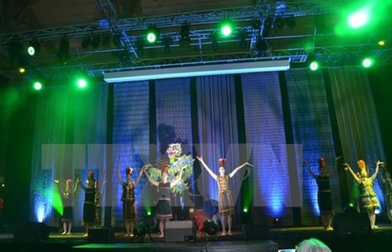 Cộng đồng người Việt tại Pháp vui đón Tết cổ truyền Bính Thân 2016